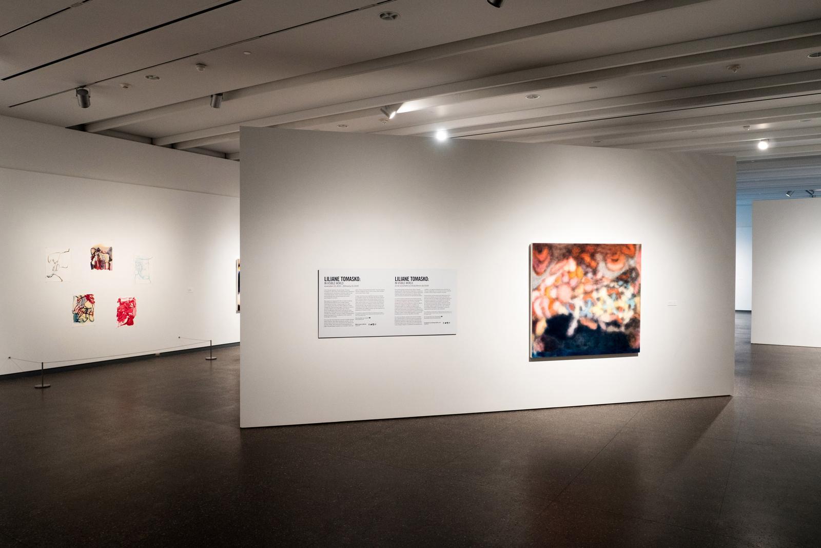 Liliane Tomasko - Artists - Kerlin Gallery