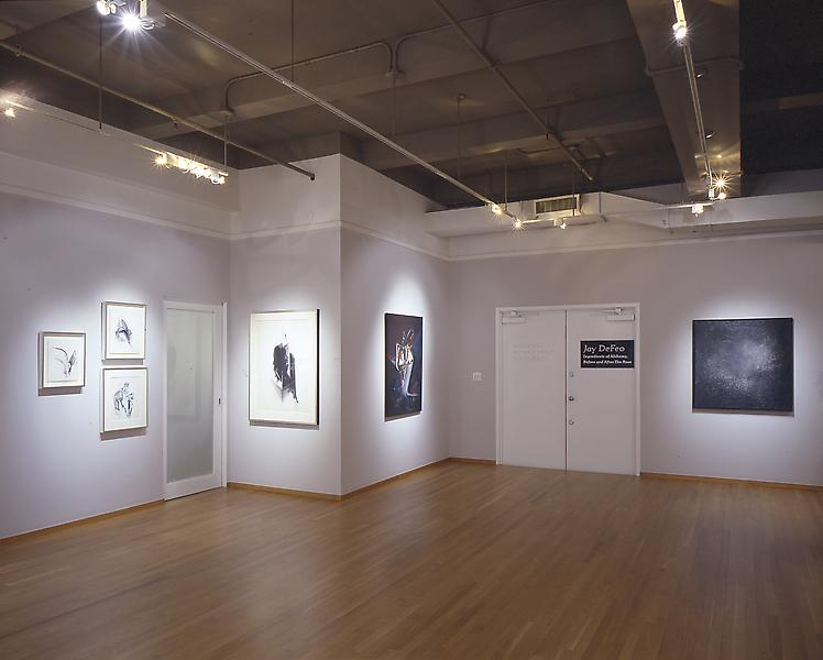 Installation Views - Jay DeFeo: Ingredients of Alchemy, Before and After The Rose - March 14 – May 4, 2002 - Exhibitions