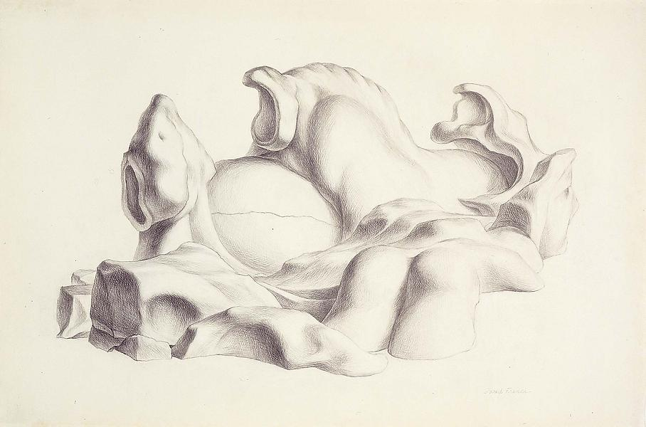 "Nest, 1965 graphite on paper 27 1/4"" x 41&quo..."