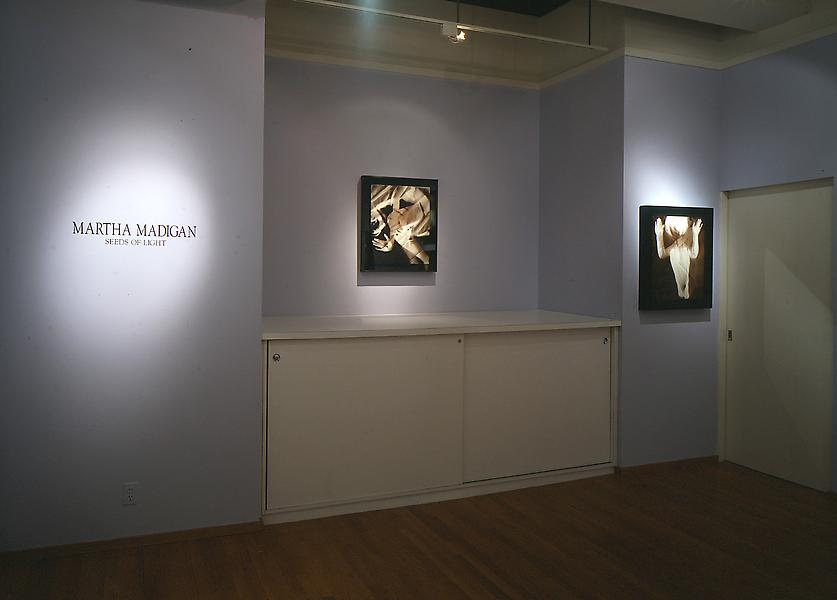 Installation Views - Martha Madigan: Seeds of Light from the Human Nature Series - April 2 – May 31, 1997 - Exhibitions